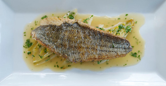 Pan Roasted Striped Bass with Endive and Orange, Bar Lola, Portland, Maine, photo by Russell French